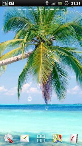 热带海滩 LWP|玩個人化App免費|玩APPs