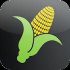 Corn Yield Calculator icon