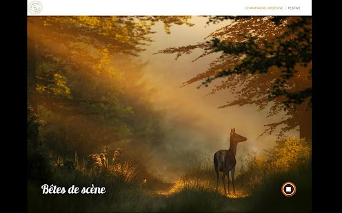 Champagne-Ardenne n°1- screenshot thumbnail