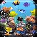 Aquarium Live Wallpaper download