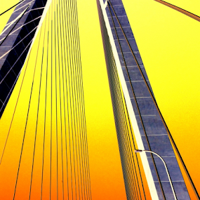 Over the Setting South Carolina Sun by Christopher Charlton - Buildings & Architecture Bridges & Suspended Structures ( high-quality, frame, buy, color, bridges, usa, south carolina )