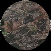 Mossy Oak Brown Circle Theme