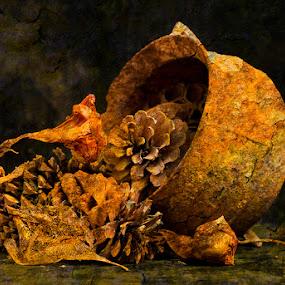 Dave Healey-Gen- Rusted pot.jpg