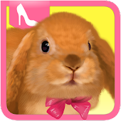 Cute Rabbit Dress Up