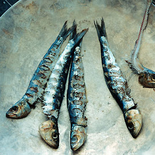 Grilled Fresh Sardines with Fennel and Preserved Lemon