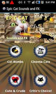 Epic Cat Sounds and FX- screenshot thumbnail