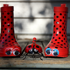 Watching the sun go down ... by Diane Hallam - Artistic Objects Still Life ( child, children, ladybird, boots, red polka dots,  )