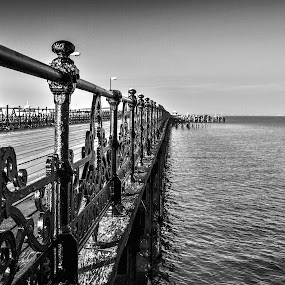 The Long Walk by Garry Weeks - Black & White Buildings & Architecture ( railings, black and white, rule of thirds, horizon, sea,  )