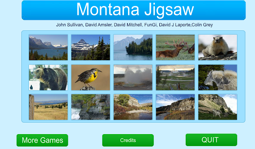 Montana Jigsaw