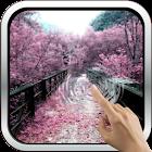 Amazing Sakura 3D Wallpaper icon