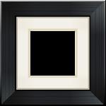 Aviary Frames: Original 1.1 Apk