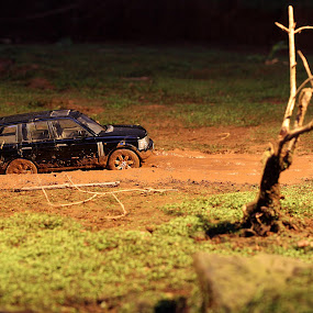 In The Mud by Rully Kustiwa - Artistic Objects Toys