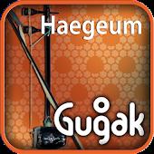 Haegeum(kr)