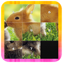Slide Puzzle - Animal icon
