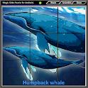 Magic Slide Puzzle B Fishes 1 icon