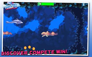 Screenshot of Dolphin Water Race Show