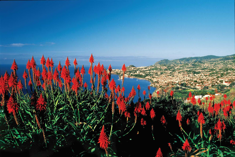 View of Funchal on the island of Madeira, Portugal.