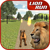 Animal Run - Lion