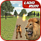 Animal Run - Lion 1.2 Apk