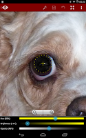 Screenshot of Red Eye Removal (Free)