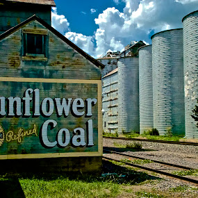 Sunflower Coal by Hugh Hazelrigg - Buildings & Architecture Other Exteriors ( silos, railroad, agriculture, architecture, energy )