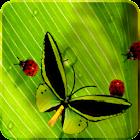 Nette Insekten Live Wallpaper icon