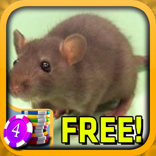 3D Rat Slots - Free 紙牌 LOGO-阿達玩APP