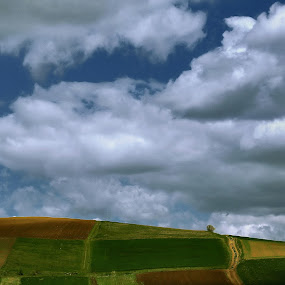 windows 2014 by Nicu Hoandra - Landscapes Mountains & Hills ( sky, green, spring, colours )