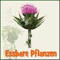 essbare Pflanzen / Kräuter APP icon