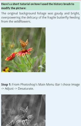 Hướng dẫn Photoshop miễn phí