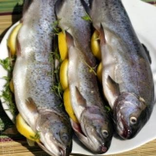 BBQ Forel met pecannoten