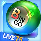Bingo City Live 75+Vegas slots icon