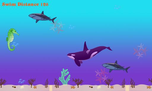 Seahorse Splash FREE