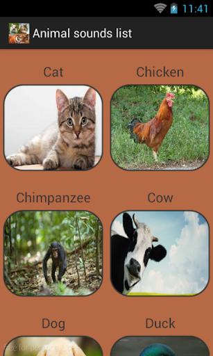 Animal sounds list