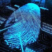 DMIT - Fingerprint Analysis