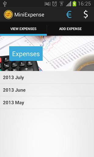 Mini Expense