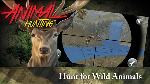 Animal Hunting 3D