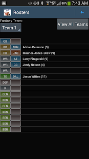 Fantasy Football Draft Magnate- screenshot thumbnail