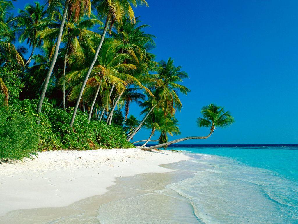 Hd Tropical Island Beach Paradise Wallpapers And Backgrounds: Tropical Paradise Wallpapers