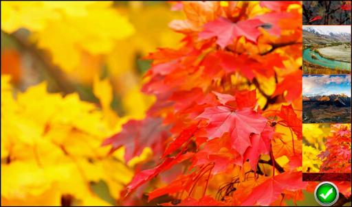 秋の壁紙2014
