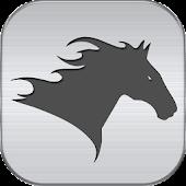 US Horse Racing News