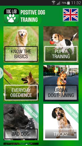 DogLab Positive Dog training