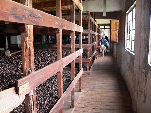 nutmeg-gouyave-grenada - The nutmeg processing plant in Gouyave, Grenada.