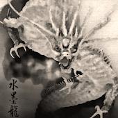 Ryujin Sumi