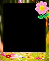 Blumen Bilderrahmen kostenlose blumen bilderrahmen apk apkname com