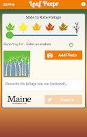 Screenshot of Foliage Leaf Peepr