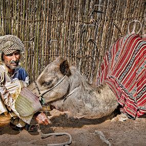 The Owner by Jon Jon Moralita - People Street & Candids ( camel, desert, owner, people, photography, animal )