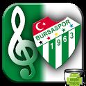 Bursaspor Marşları icon