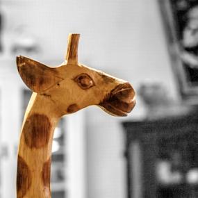 Antique Giraffe by Frank Matlock II - Artistic Objects Still Life ( curio, statue, unique, wood, giraffe, bokeh, kind )