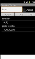 Screenshot of Arabic French Dictionary